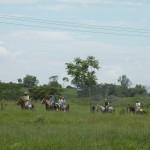 Campamento Casa de Campo II Temporada 2011 (30)