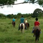 Campamento Casa de Campo Temporada 2013  (121)